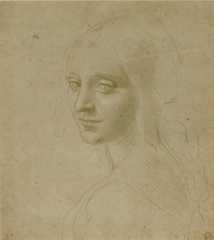 Fig_5_Leonardo._Head_of_a_Young_Woman.JPG